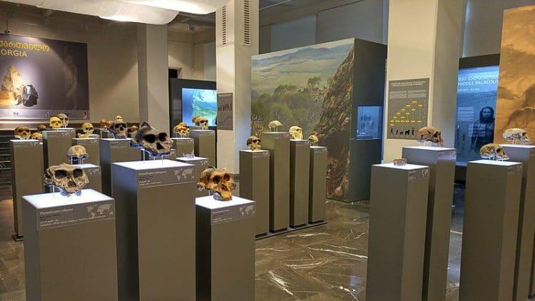 Грузинский национальный музей - достопримечательности Тбилиси