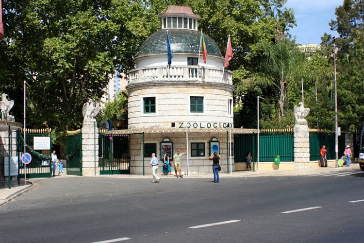 Лиссабонский зоопарк - достопримечательности Лиссабона, Португалия