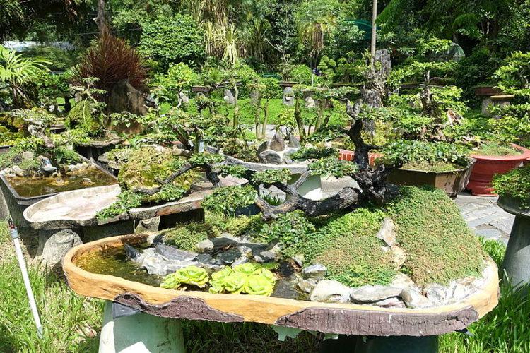 Зоопарк и ботанический сад - достопримечательности Хошимина