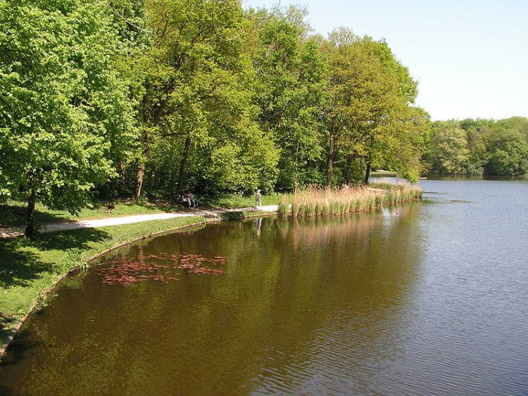 Гаагский лес - достопримечательности Гааги