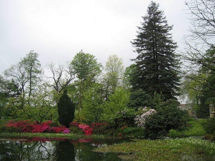 Ботанический сад Гентского университета - достопримечательности Гента