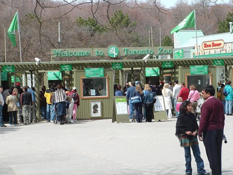 Зоопарк Торонто в Канаде