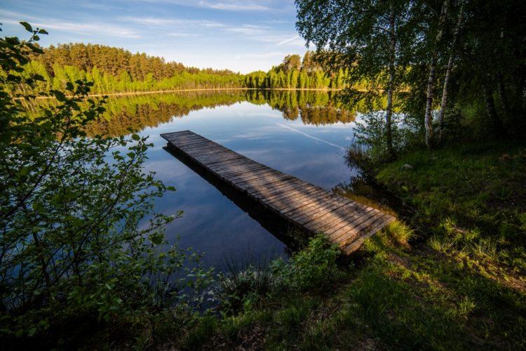 Дзукийский национальный парк в Литве