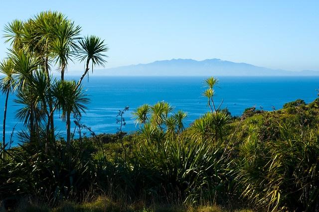 Остров Тири Тири Матанги в Новой Зеландии