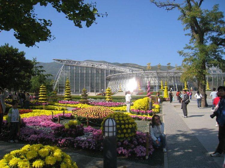 Пекинский ботанический сад в Китае
