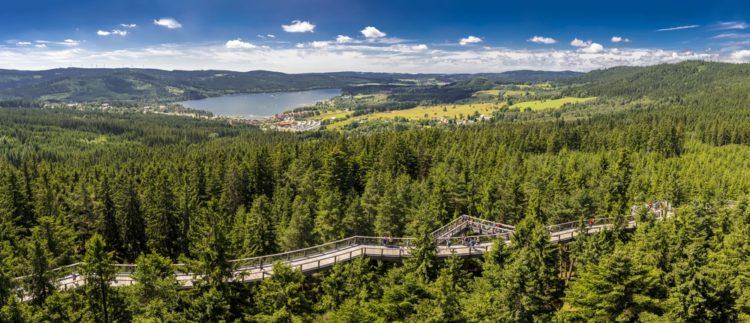 Озеро и экологическая тропа Липно в Чехии