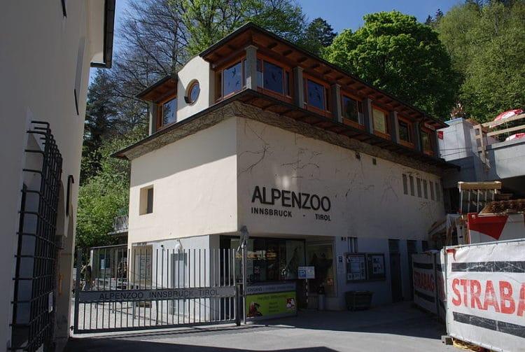 Альпийский зоопарк - достопримечательности Инсбрука