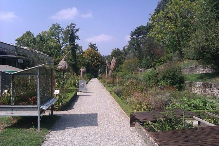 Ботанический сад - достопримечательности Лозанны