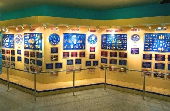 Музей морских раковин - достопримечательности Пхукета